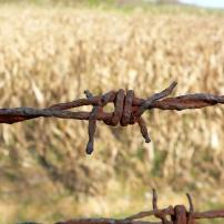 Ustawa o kształtowaniu ustroju rolnego nie taka straszna